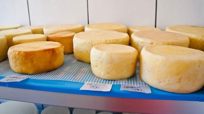Как делается пальмерский козий сыр