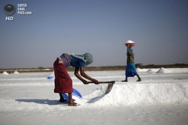 Производство соли в Индии
