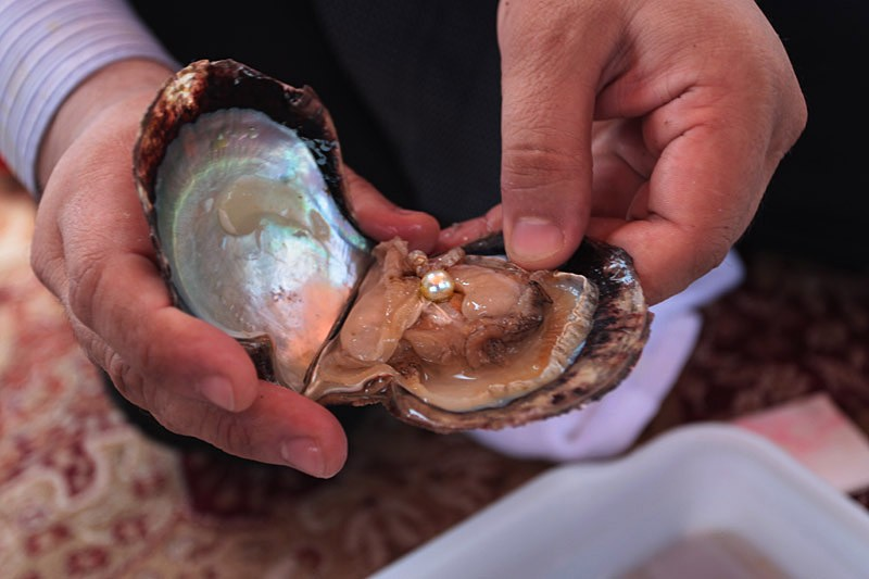 Oyster Pearl Company  Parties Give a Pearl